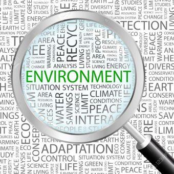 environment terms